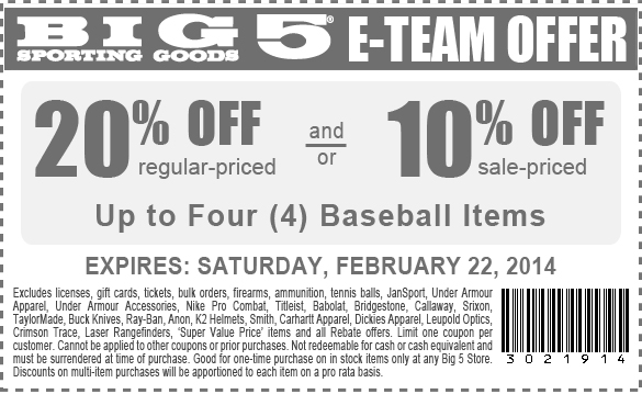 graphic about Big 5 Coupons Printable named Large 5 coupon 10 off / Papa jones pizza menu
