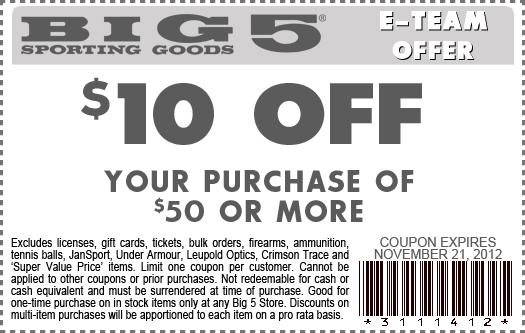 10 coupon big 5